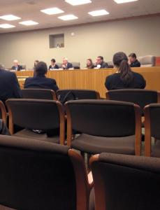 Public Hearing at State Capitol on February 24, 2015